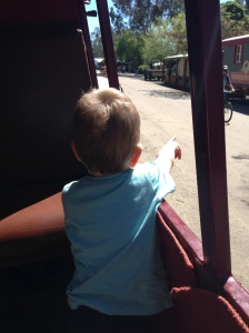 Liam loved our carriage ride
